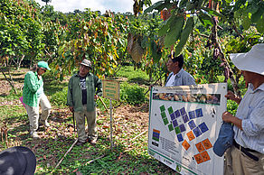 Victor Soto, scientific assistant, introduces the trial design of the cocoa long-term trial in Bolivia, Sara Ana