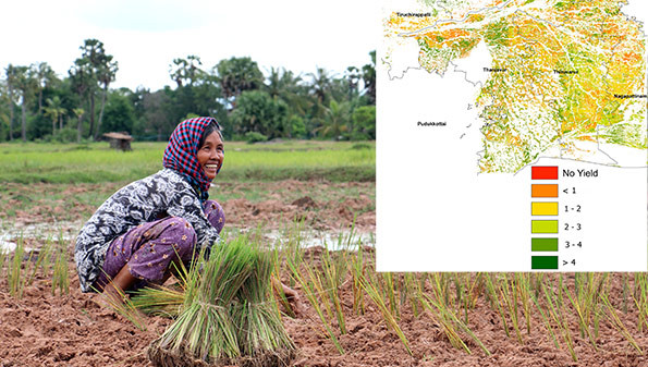 Photo: Woman rice farmer (Credits: Bernard Zaugg) and yield estimation map (Credits: sarmap/IRRI)