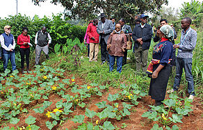 Participants of the horizontal evaluation in Kenya visiting a farmer at Kangari who is working with SysCom